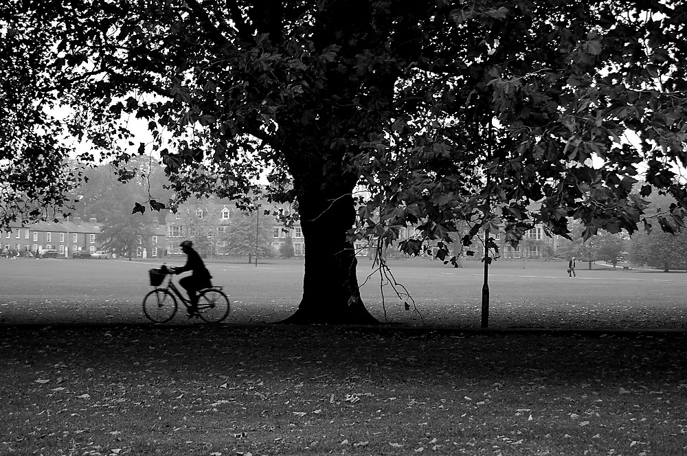 photoblog image Bikes in Cambridge 5/5